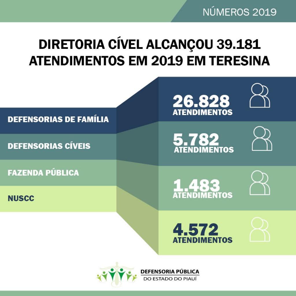 Diretoria Cível da Defensoria alcançou quase 40 mil atendimentos em 2019 em Teresina
