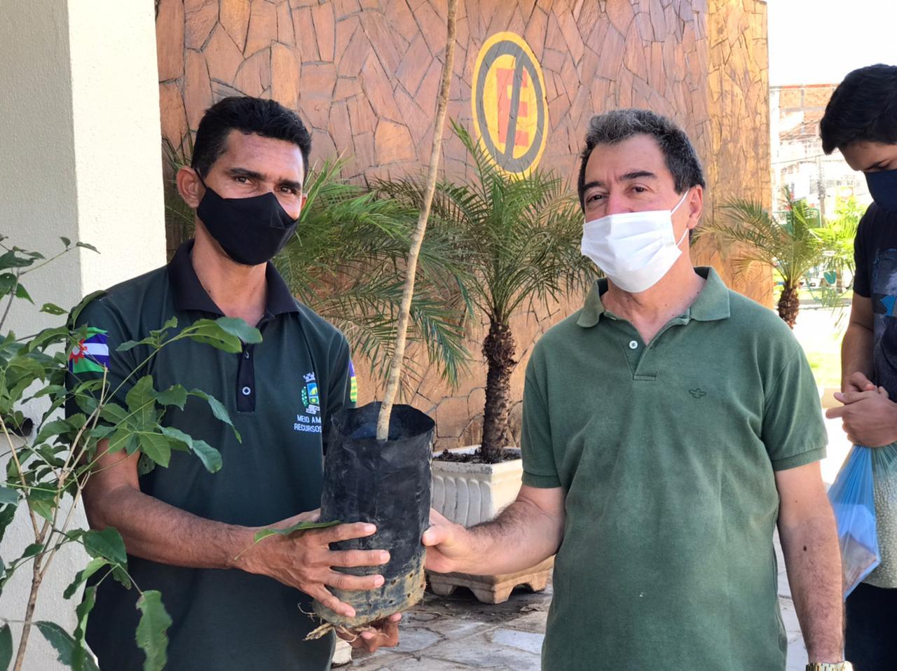 SEMAM de Picos distribui mudas de plantas no Dia Mundial do Meio Ambiente