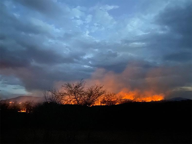 Após recorde de incêndios, governo proíbe queima controlada em todo Piauí