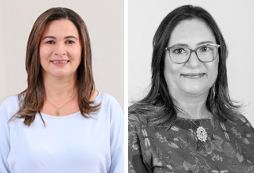 Mulheres ainda são minoria na Câmara Municipal de Picos