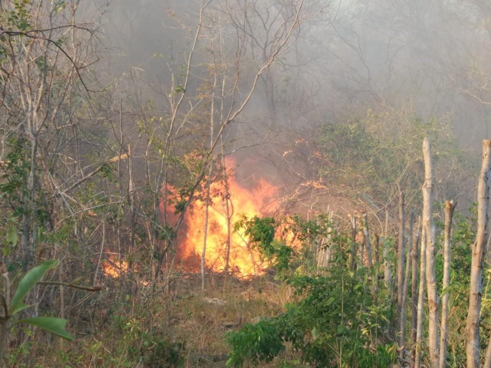 Piauí tem alerta de baixa umidade, com perigo de incêndio e riscos à saúde